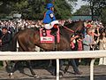 Game on Dude at Belmont Stakes.jpg