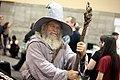 Gandalf cosplayer (27394385886).jpg