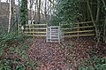 Gate and footpath - geograph.org.uk - 1079173.jpg