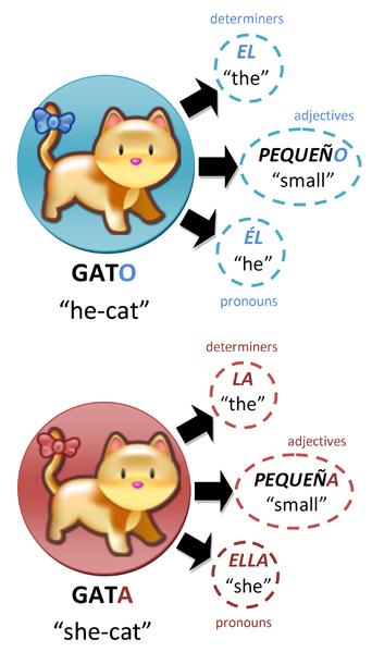 File:Gatos.png