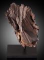 Gebel Kamil - Aerodynamic Meteorite Flange (49796097546).png