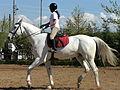 Girl riding horse 1030856 nevit.jpg