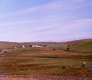 Girvan and Portpatrick Junction Railway - Glenwhilly station in August 1980
