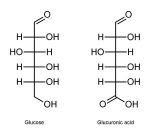 d 2 deoxyglucose fischer projection  Exemplo [ editar | editar