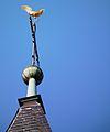 Goldener Hahn Turmkreuz evangelische Stadtkirche Schriesheim.JPG