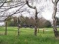 Golfers at Long Lane, Worrall, near Oughtibridge - geograph.org.uk - 1117019.jpg
