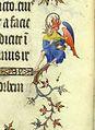 Grandes Heures de Jean de Berry Fol. 13v - grotesque-2.jpg