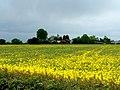 Grange Farm near Seaton Ross - geograph.org.uk - 178022.jpg