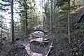 Grassi Lakes road trip Canmore Alberta Canada (10277620044).jpg