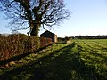 Grassy track to barn - geograph.org.uk - 631528.jpg