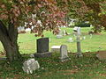 Gravestones beneath the tree (2982628296) (2).jpg