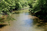 Green Creek (Fishing Creek) in springtime.JPG