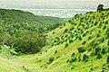 Green landscape on the Dadu Plateau.jpg