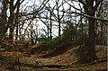 Grimsbury Castle - Iron-age Hillfort - geograph.org.uk - 1192626.jpg