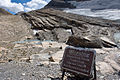 Grinnell Glacier (4120044144).jpg