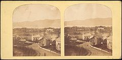 Group of 17 Early Calotype Stereograph Views - DP75396.jpg