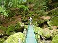 Hängebrücke in der Buchberger Leite bei Ringelai.JPG