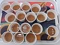 HK 九龍塘 Kln Tong 達之路 Tat Chee Avenue 香港生產力大樓 Hong Kong Productivity Council HKPC Building seminar catering drink paper cup milktea September 2019 SSG.jpg