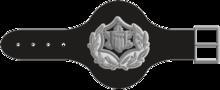 Haga-1980-5.png