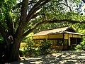 Hakone Gardens, Saratoga, CA - IMG 9147.JPG