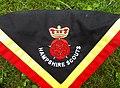 Hampshire Scouts necker.jpg