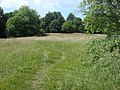 Hampstead Heath - geograph.org.uk - 1510869.jpg