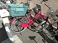 Hanazonokita20090621 1620.jpg