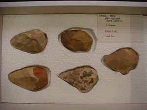 Tabun Cave - Image: Handaxes Israel Tabun 1934 12 15 tray