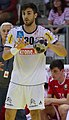 Handball-WM-Qualifikation AUT-BLR 071.jpg