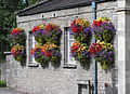 Hanging baskets in thornbury arp.jpg
