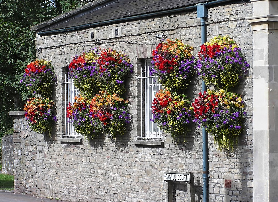 Hanging baskets in thornbury arp