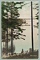 Harjutie, Laukanlahti, Mäntyniemi, Laukansaari, Signe Brander circa 1900 PK0136.jpg