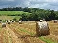 Harvested farmland, Hambleden - geograph.org.uk - 963303.jpg