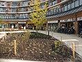 Heksenwiel (winkelcentrum) DSCF7337.jpg