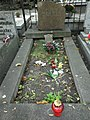 Helena Jaworska grób.JPG