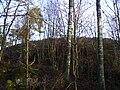 Henriksborgs ruin, den 18 december 2008, bild 22.JPG