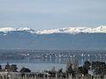 Hermance - Genève (31.12.12) 100 (8333239634).jpg