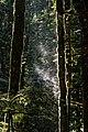 Hidden Grove Park 16 (15201256837).jpg