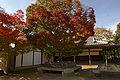 Himeji Koukoen11s4592.jpg