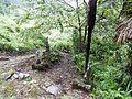 Hio, Toyama, Toyama Prefecture 930-1283, Japan - panoramio (14).jpg