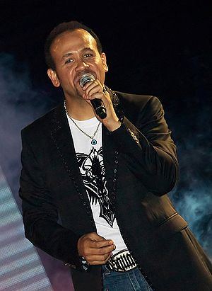 Hisham Abbas - Image: Hisham Abbas 2008 07 15 Cairo