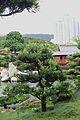 Hong Kong Nan Lian Garden IMG 4892.JPG