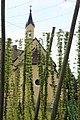 Hopfengarten Brauerei Schnaitl 03.jpg