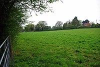 Horndon Meadow - geograph.org.uk - 1251470.jpg