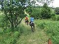 Horse riding plitvice 3.JPG
