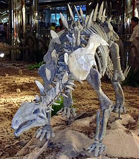 <i>Huayangosaurus</i> genus of reptiles (fossil)