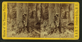 Hunter in the Yosemite Valley, by E. & H.T. Anthony (Firm).png