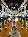 Hunterian Museum, University of Glasgow.jpg
