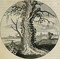 Iacobi Catzii Silenus Alcibiades, sive Proteus- (1618) (14563024119).jpg