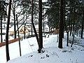 Imanta, Kurzeme District, Riga, Latvia - panoramio (23).jpg